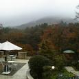 箱根ガラスの森美術館 景色